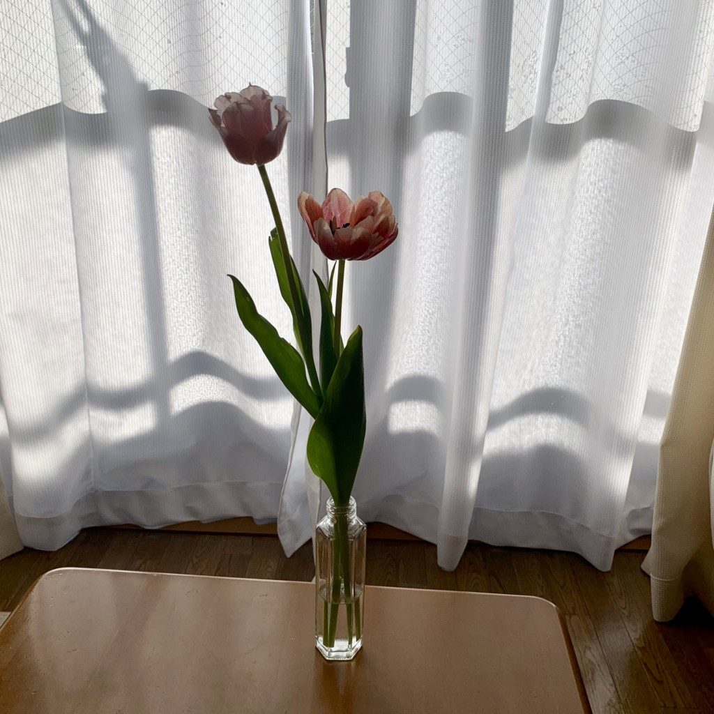チューリップ 生花 インテリア 韓国雑貨 韓国 模様替え 通販 お店 飾り方
