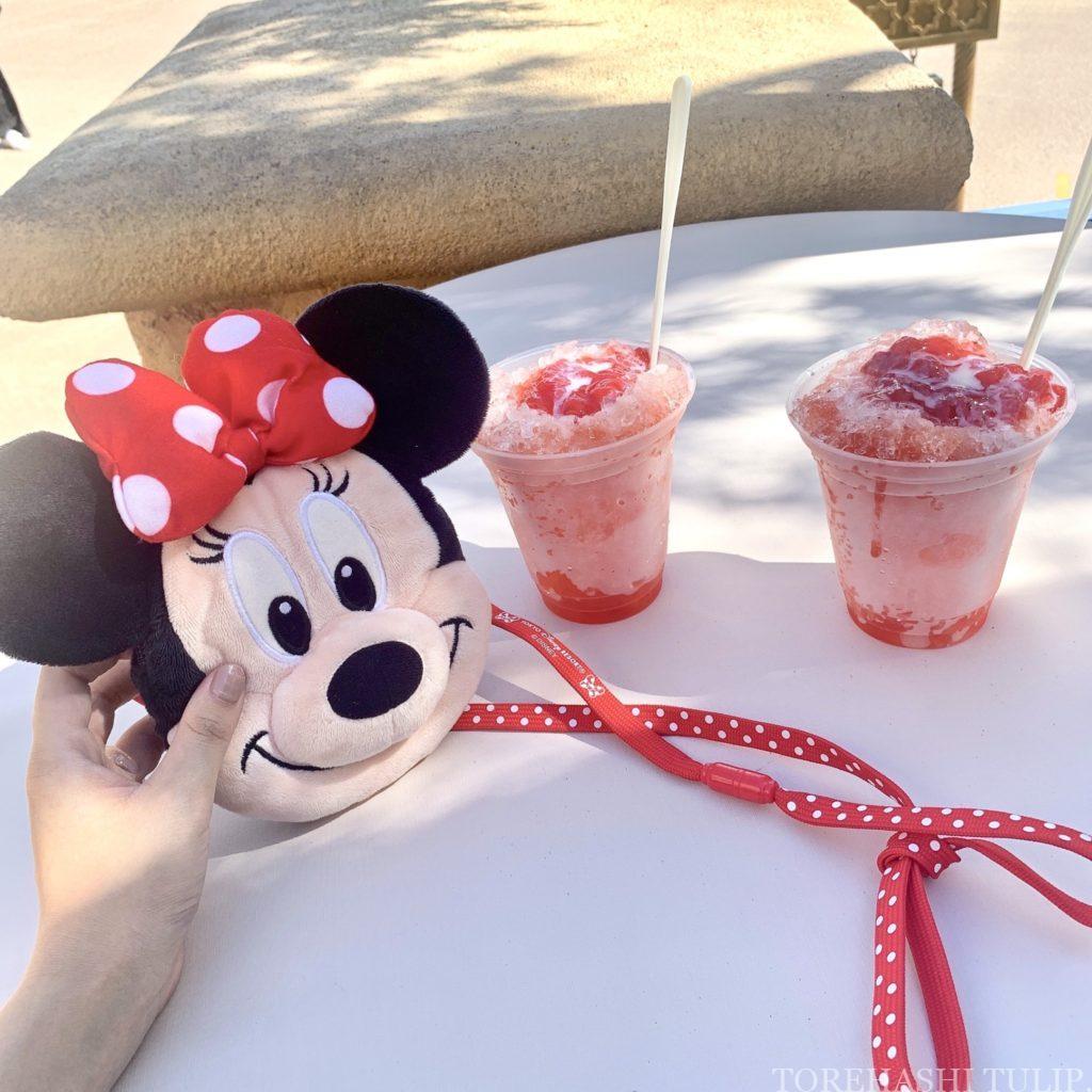 夏 2020 ディズニーランド ディズニーシー ひんやりスイーツ アイスクリーム パーク限定 インスタ映え シェイブアイス
