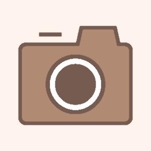 ホーム画面カスタマイズ アプリ アイコン カスタマイズ 変更方法 アイコン無料配布 プレゼント カメラアプリ