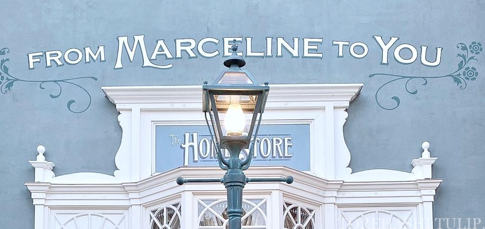 ディズニーランド ホームストア ワールドバザール 写真スポット インスタ映えスポット グレーの壁 マーセリン ホームストアのオーナー