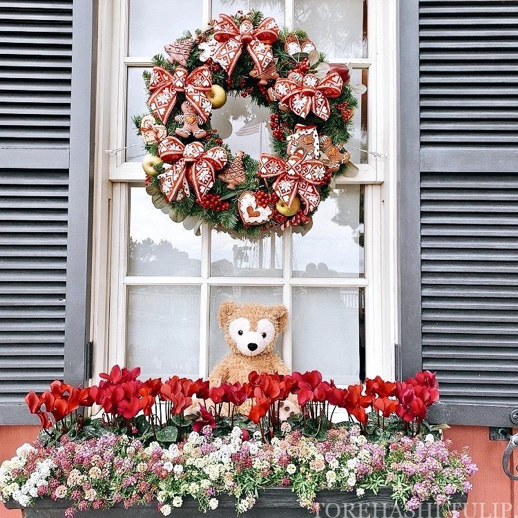 ディズニーシー アメリカンウォーターフロント  ディズニークリスマス クリスマス装飾 インスタ映えスポット 写真ポーズ ダッフィーバウンド アーント・ペグズ・ヴィレッジストア(ダッフィーのお店)