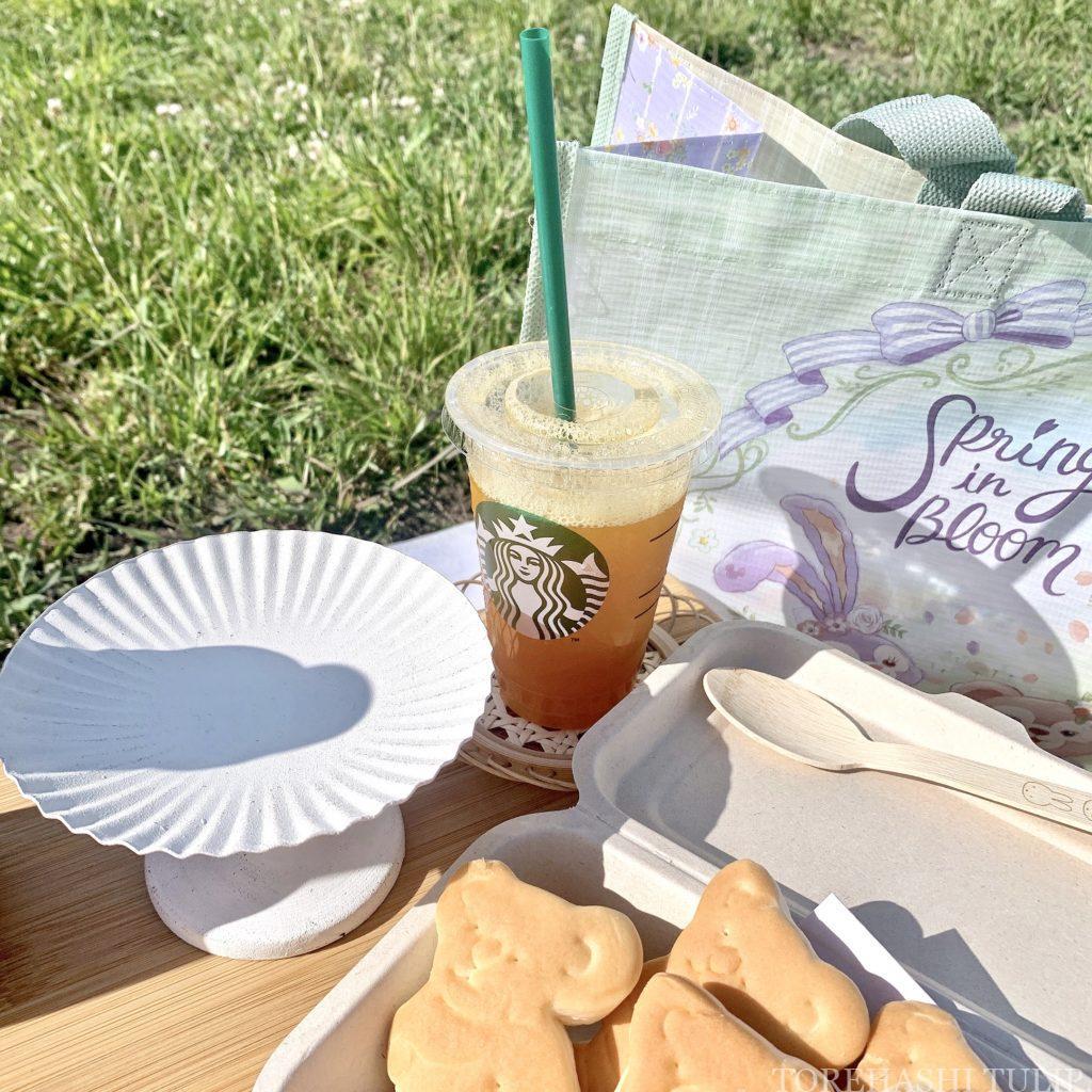 おしゃピク ピクニック おしゃれ 基本とコツ 100均 食べ物 布 無印良品 ランチ箱 プチプラ 初心者 飾り 韓国雑貨