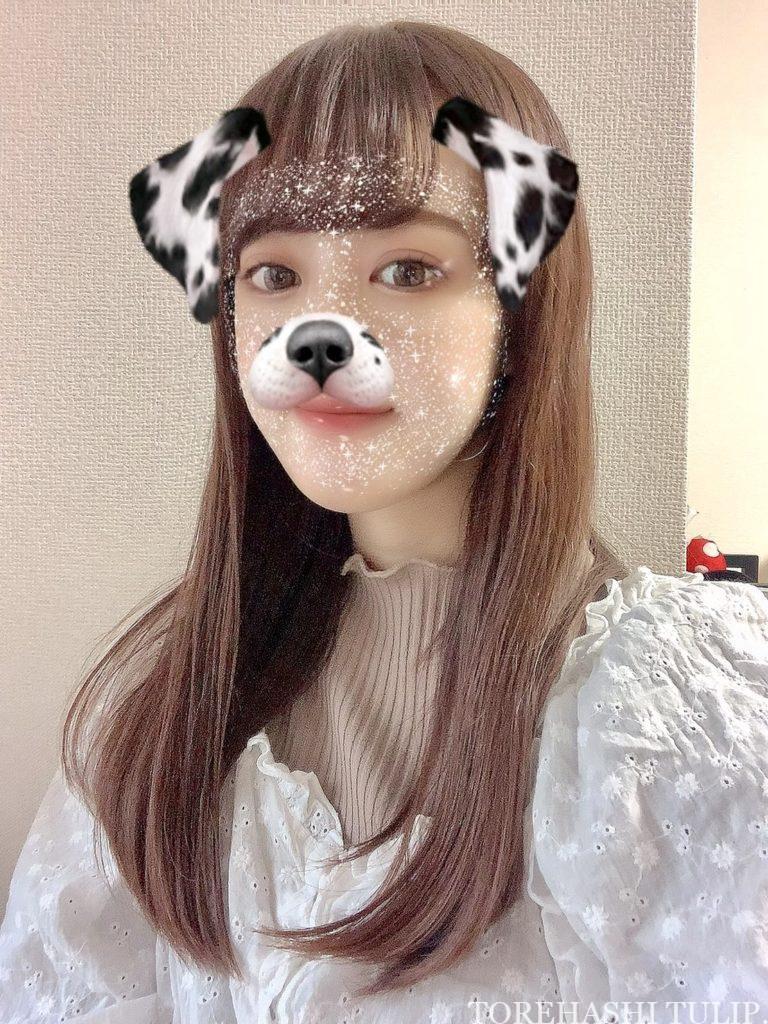 Instagram インスタグラム ストーリー 글리터 마스크 グリッターマスク エフェクト 白いキラキラマスク フィルター 加工アプリ 盛れる 犬