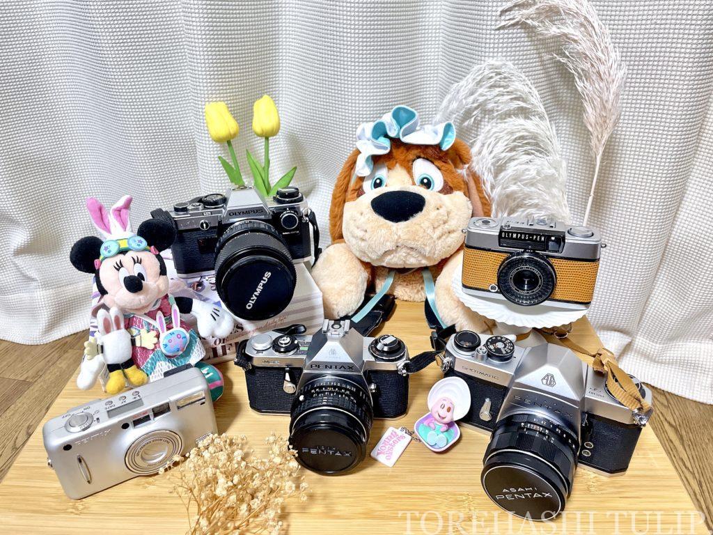 フィルムカメラ 愛用 おすすめ 初心者 購入方法 現像方法 費用 フィルム一眼 ハーフフィルムカメラ 電池式フィルムカメラ インスタ映え