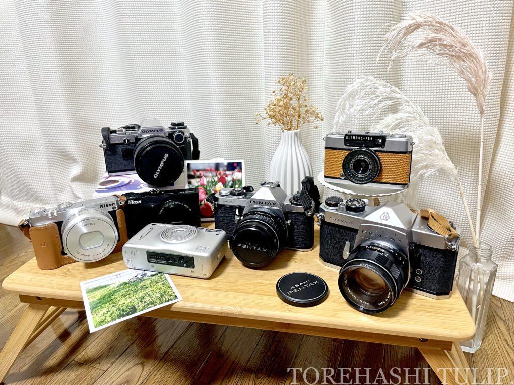 フィルムカメラ 愛用 おすすめ 初心者 購入方法 現像方法 費用 フィルム一眼 ハーフフィルムカメラ 電池式フィルムカメラ インスタ映え 買う場所 メルカリ フリマサイト 選び方