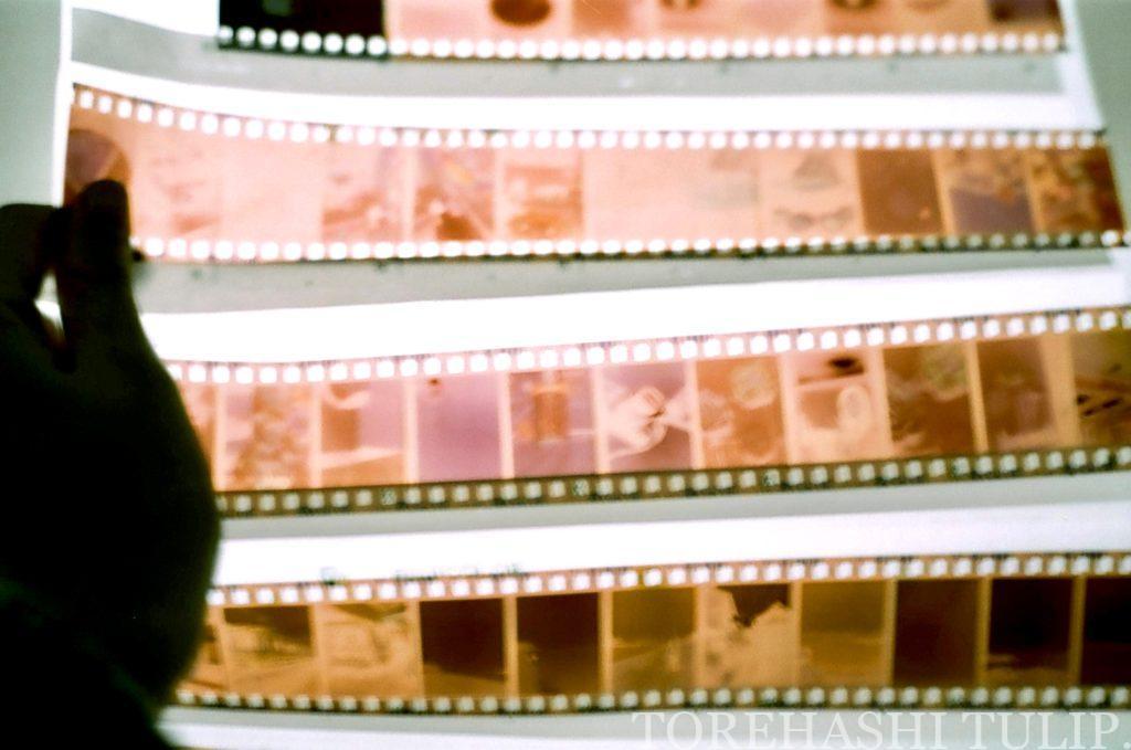 フィルムカメラ 愛用 おすすめ 初心者 購入方法 現像方法 費用 フィルム一眼 ハーフフィルムカメラ 電池式フィルムカメラ インスタ映え ネガフィルム FUJIFILM  カラーフィルム