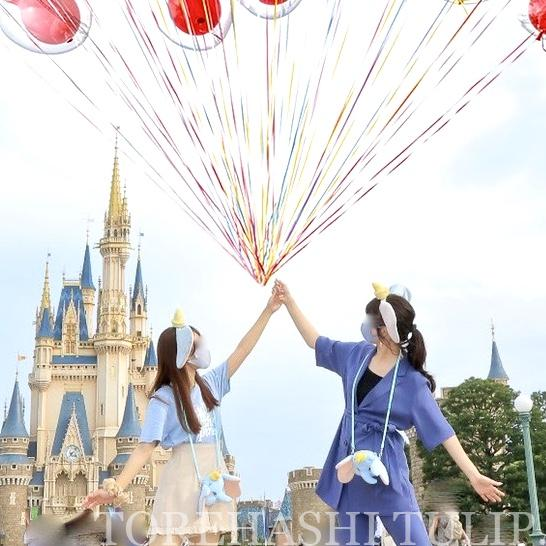 ディズニー カメラキャスト カメキャス フォトキー 風船 ミッキーバルーン シャボン玉 場所 合成 野生カメキャス 無料 最新 2021年 バルーン入りフォト